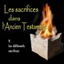Les sacrifices - 9. Les différents sacrifices