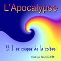 L'Apocalypse - 8. Les coupes de la colère [ Ap 15,5 - 16,21 ]