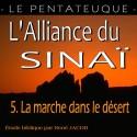 L'Alliance du Sinaï - 5. La marche dans le désert [ Nb 9-21 ]