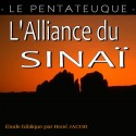 L'ENSEMBLE DE L'ALLIANCE DU SINAÏ