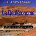 Le Deutéronome - 1. N'oublie pas ce que tu as vu et entendu [ Dt 1,1-4,43 ]