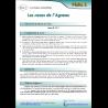 2 - Les noces de l'Agneau