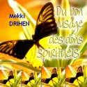Mekki DRIHEN - Du bon usage des dons spirituels